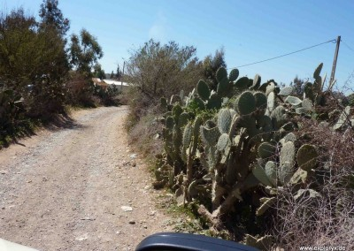Andalusien Marokko mit Daily 4x4