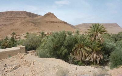 Andalusien Marokko Reise mit Impala Daily 4x4