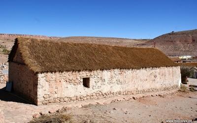 Exploryx Impala in der Atacama