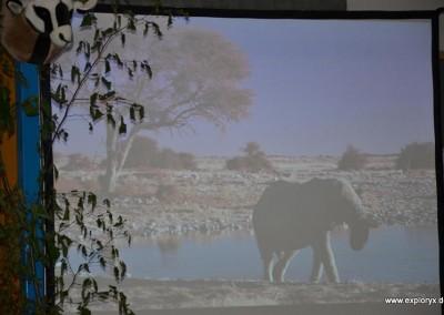 Reisevortrag Namibia von Janette Emerich