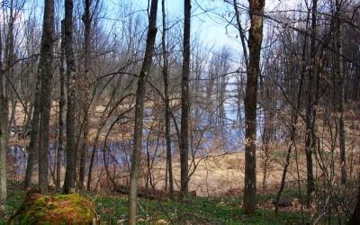 unzählige Trekking Pfade führen entlang des Ottawa Rivers