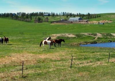 North Dakota Farming