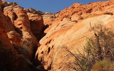 Capitol Reef National Park USA  (14)