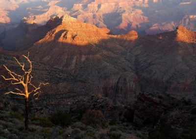 Mit dem Expeditionsmobil am Grand Canyon (11)