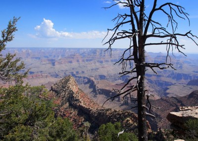 Mit dem Expeditionsmobil am Grand Canyon (12)