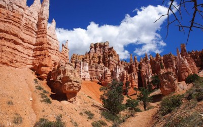 Grand & Bryce Canyon