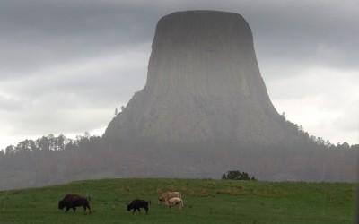 Bei strömendem Regen und Graupelschauer: der Devils Tower
