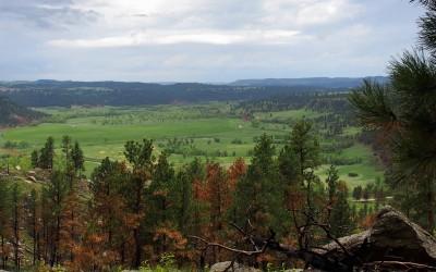 Prärielandschaft Nordost Wyoming