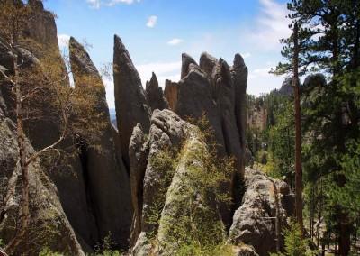 "Black Hills mit den bekannten ""Nadel""-Felsformationen"