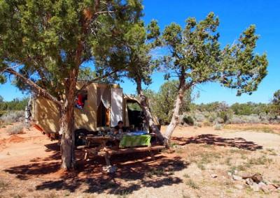 Sonora Desert (12)