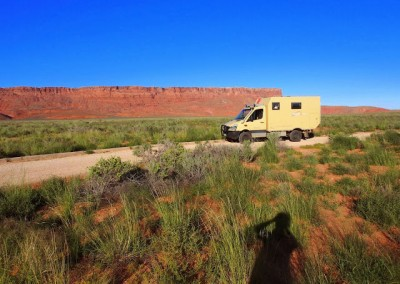 Sonora Desert (14)