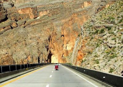 Sonora Desert (4)
