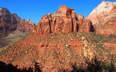 Sonora Desert (6)