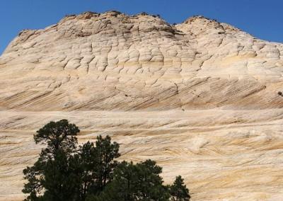 Von Utah nach Las Vegas - Trip durch die USA (22)