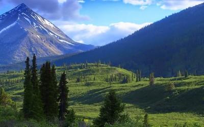 Expeditionsfahrzeug in Alaska - Exploryx (6)