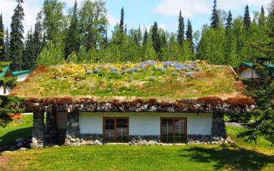 Mit dem Reisemobil nach Yukon Alaska (22)