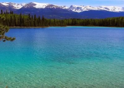 Mit dem Reisemobil nach Yukon Alaska (34)
