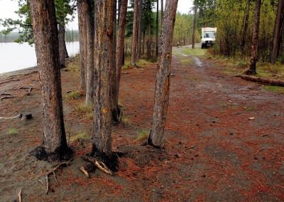 Mit dem Reisemobil nach Yukon Alaska (37)