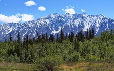 Mit dem Reisemobil nach Yukon Alaska (42)