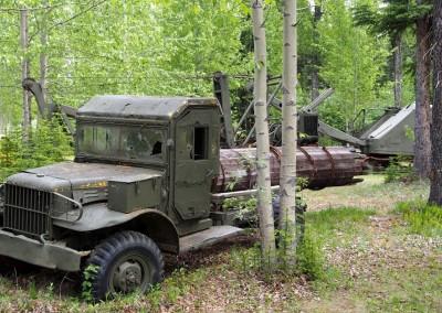 Mit dem Reisemobil nach Yukon Alaska (46)
