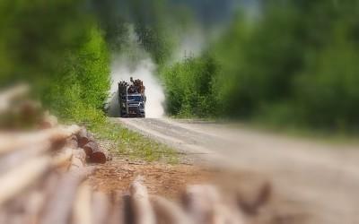 Mit dem Reisemobil nach Yukon Alaska (7)