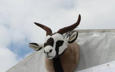 Abenteuer Allrad in Bad Kissingen - Outdoormesse (1)