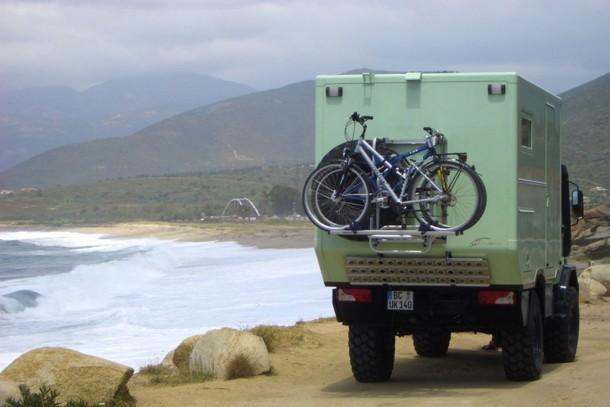 Klippspringer in Korsika
