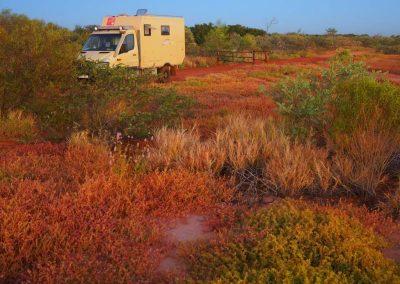 Expeditionsfahrzeug in Australien (19)