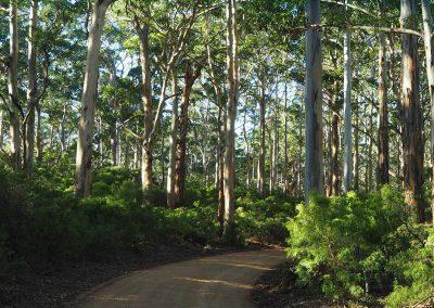 Expeditionsfahrzeug in Australien (4)