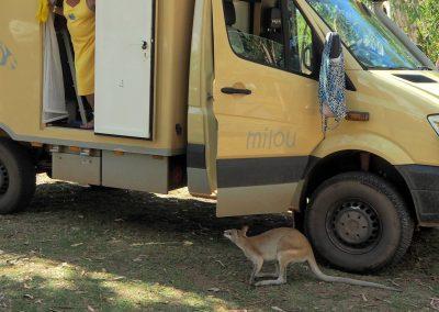 Reisemobil in Australien (2)