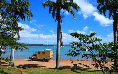 Milou in Australien