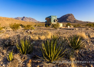 Camp Chilicotal, Big Bend National Park, Texas