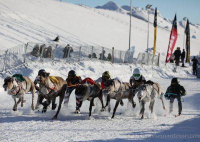 77_Norwegen_Exploryx Rentierrennen