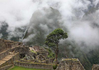 Exploryx Eland Panamericana Wohnmobil (46)
