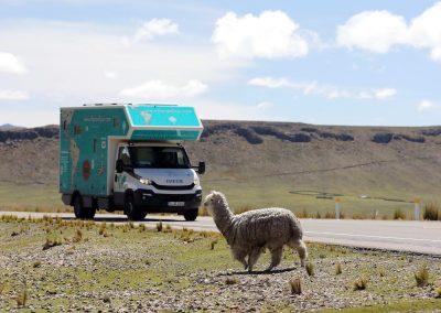 Exploryx Eland Panamericana Wohnmobil (53)